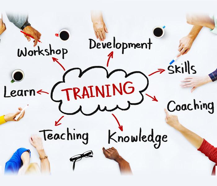 Salesforce   Python   Hadoop   SAP   java   Net Selenium Training in